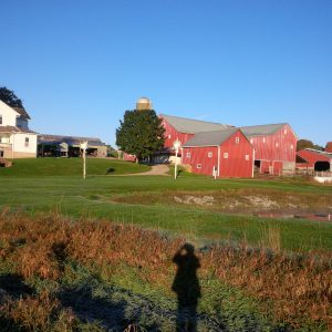 Jonas Stutzman homestead