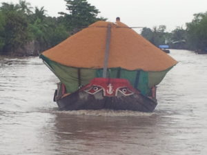Transporting rice husks on the Mekong River. Do you see the eyes?