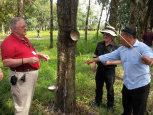 Learning from workers at the rubber plantation